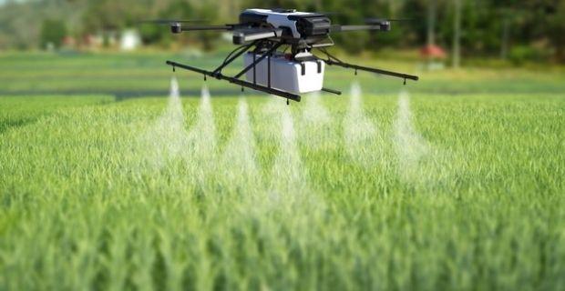 Les pesticides biologiques en sont-ils vraiment? Notre avis sur le sujet